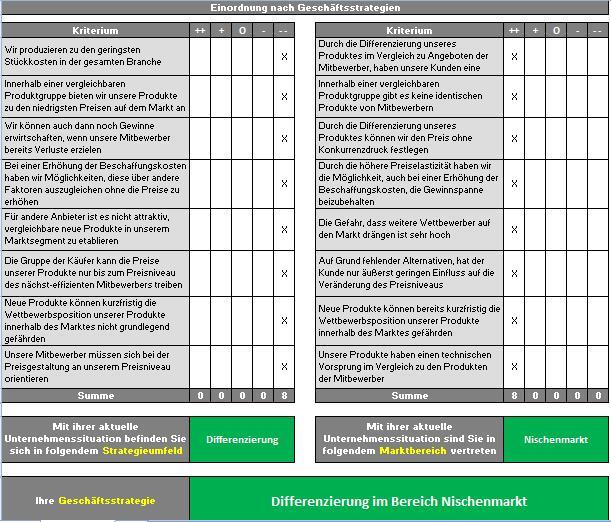 Vorlage-Einordnung-nach-Geschaeftsstrategien